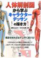 人体解剖図から学ぶキャラクターデッサンの描き方 構造を知れば必ず上手く描ける!