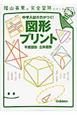 図形プリント 平面図形・立体図形 陰山英男の完全習熟シリーズ 中学入試の力がつく!