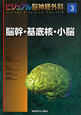 脳幹・基底核・小脳 ビジュアル脳神経外科3