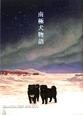 南極犬物語