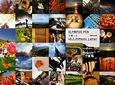 OLYMPUS PENで撮った40人のPhoto Letter