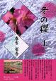 冬の櫻(上)