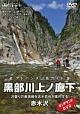 アドバンス山岳ガイド 黒部川上ノ廊下 赤木沢 沢登りの最高峰を志水哲也が案内する