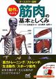 オールカラー図解 動作でわかる筋肉の基本としくみ