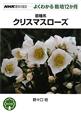 原種系 クリスマスローズ よくわかる栽培12か月