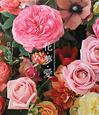 花・夢・愛 YASUKO MANAKO'S FLOWER LI