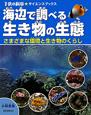 海辺で調べる生き物の生態 さまざまな環境と生き物のくらし