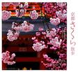京都 さくら散歩