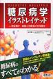 糖尿病学 イラストレイテッド 発症機序・病態と治療薬の作用機序