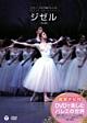 鑑賞ナビ付 DVDで楽しむバレエの世界 ミラノ・スカラ座バレエ団 「ジゼル」