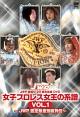 JWP 旗揚げ20周年記念作品 女子プロレス女王の系譜 JWP 認定無差別級列伝