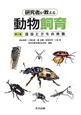 研究者が教える動物飼育 昆虫とクモの仲間 (2)