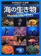 海の生き物 365日出会う大自然