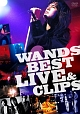 WANDS BEST LIVE & CLIPS