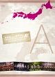 AKBがいっぱい〜SUMMER TOUR 2011〜 TeamA