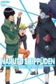 NARUTO 疾風伝 九尾掌握と因果なる邂逅の章 2