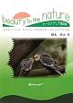 beauty in the nature オーストラリア鳥図鑑 セキセイインコ、オカメインコが住むオーストラリアの