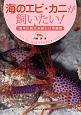 海のエビ・カニが飼いたい! 簡単に飼える美しい甲殻類