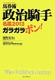 政治騎手名鑑 2013 ガラガラポン! 馬券術