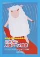 こどもの人気アニメ曲集 「ジュエルペットきら☆デコッ!」ほか、こどもたちに人気のアニメが満載!