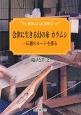 会津に生きる幻の糸 カラムシ 伝播のルートを探る