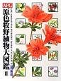 APG 原色牧野植物大図鑑 グミ科~セリ科 (2)