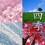 Seasons (韓国版)