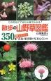 散歩の山野草図鑑 この花なに?がひと目でわかる! 350種 探しやすい花色・果実別の写真もくじ付き