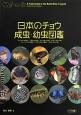 日本のチョウ成虫・幼虫図鑑 アゲハチョウ科/シロチョウ科/シジミチョウ科/タテ