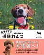 カワイイ!道民わんこ I・LOVE HOKKAIDOGS