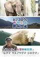 『ムツゴロウのゆかいな動物図鑑』シリーズ「ゾウとサイ 大型の哺乳類」 「ヒグマ ツキノワグマ シロクマ」