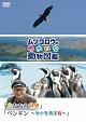 『ムツゴロウのゆかいな動物図鑑』シリーズ「鳥たちの世界」 「ペンギン ~海中を飛ぶ鳥~」