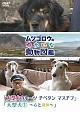 『ムツゴロウのゆかいな動物図鑑』 シリーズ 「大型犬のルーツ チベタンマスチフ」 「大型犬1 ~心と身体~」