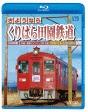 ビコム ブルーレイ展望 JR内房線 普通列車 千葉~安房鴨川 春と夏 房総色を乗り継いで