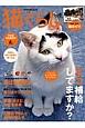 猫ぐらし 2013Summer ネコ補給してますか? (6)
