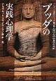 ブッダの実践心理学 アビダンマ講義シリーズ3 心所(心の中身)の分析