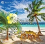 ハワイ やすらぎカフェ ~極上のリラックスなサウンドを貴方に~ 20 Special Edition