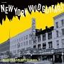 ニューヨーク・ワイルド・ギターズ~ボビーズ・ハーレム・ロックVOL1