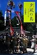 夕凪-ゆーどぅりぃ-の島 八重山歴史文化誌
