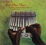 ≪ジンバブエ≫ショナ族のムビラ2 ~アフリカン・ミュージックの真髄2