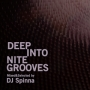 Deep Into Nite Grooves Mixed and Selected by DJ Spinna