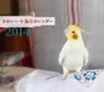 ミニカレンダー かわいい小鳥のカレンダー 2014