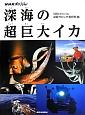 深海の超巨大イカ NHKスペシャル