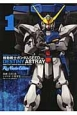 機動戦士ガンダムSEED DESTINY ASTRAY Re:Master Edition (1)