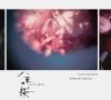 NHK大河ドラマ 「八重の桜」3