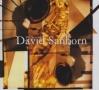 BEST OF DAVID SANBORN (REIS)