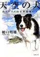 天空の犬 南アルプス山岳救助隊K-9