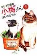 キジトラ猫の小梅さん (8)