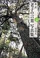 柔訳・老子の言葉 写真集(上)