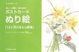 ポストカードぬり絵「12ヶ月の花&山野草」 楽しく*気軽に*好きな色で